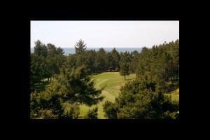 Golf course at Manzanita Rental Company.