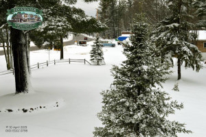 Winter time at Edgewater Inn & Cottages.