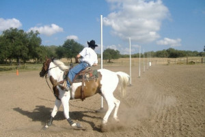 Horse activities at Silver Spur Ranch.