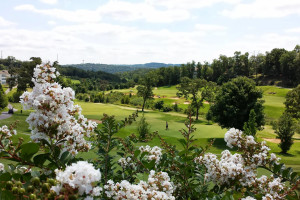 Thousand Hills Golf near Vickery Resort On Table Rock Lake.