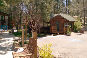 Exterior view of Timber Haven Lodge.