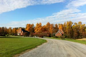 Road to cabins at Cobtree Vacation Rental Homes.