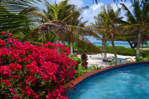 Outdoor pool at Beachhouse Apartments Aruba.