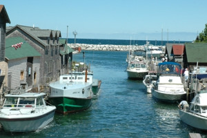 Harbor by The Cherry Tree Inn & Suites.