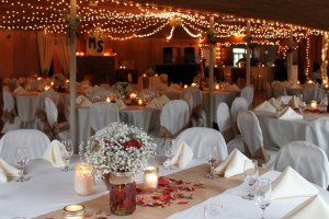 Wedding reception at Baumann's Brookside Summer Resort.