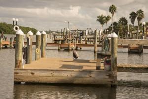 Docks at Englewood Beach & Yacht Club.