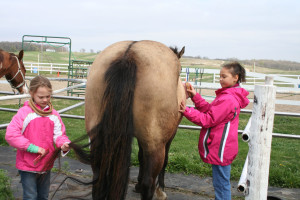 Taking care of the horses at Silver Sage Guest Ranch.