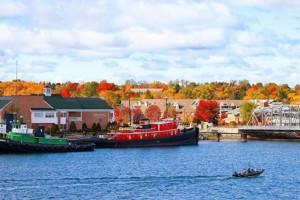 Fall colors near White Lace Inn.