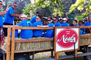 Hayrides at Neal's Lodges.