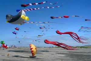 Flying kites on the beach at Canterbury Inn.