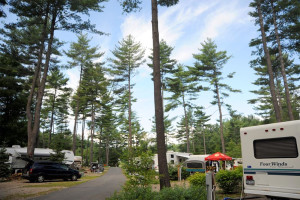 RV Park at Lake George RV Park.