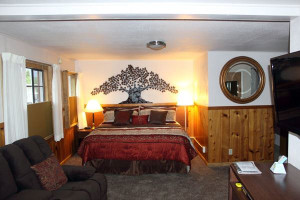 Guest room at Alpine Trail Ridge Inn.