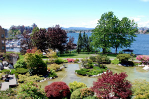 Japanese Garden at Inn at Laurel Point.