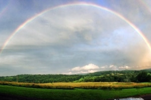 Scenic views at Fieldstone Farm.