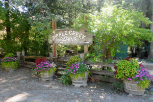 Welcome to Ripple Creek Cabins.