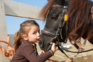 Horseback riding near Foscoe Rentals.