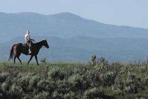 Horseback riding at Moving Mountains.