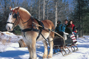 Winter sleigh ride at Cove Haven Resort.