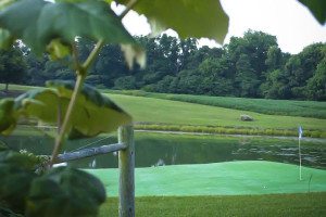 Golf course at Elk Ridge Ranch.