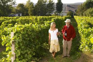 Winery near Fairmont Le Chateau Frontenac