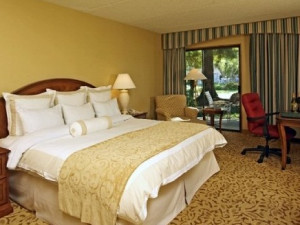 Guest room at Napa Valley Marriott Hotel and Spa.