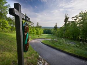 Hole 17 at Pine Mountain Resort