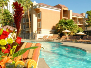 Outdoor pool at Desert Rose Resort.