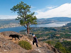 Hiking at Summerland Waterfront Resort.