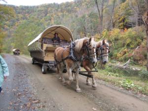 Wagon rides near Penn Wells Hotel & Lodge.