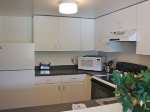 Vacation rental kitchen at Town Square Condominiums.