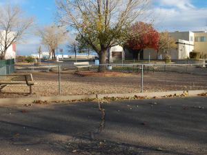 Exterior view of dog park at American RV Park.