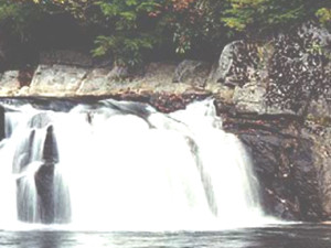 Little Waterfalls at Tuckasiegee River Mountain Lodge