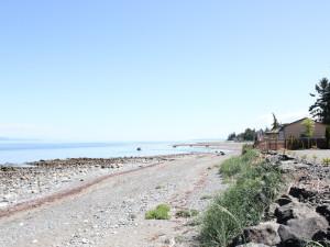 The beach at Shady Shores Beach Resort.