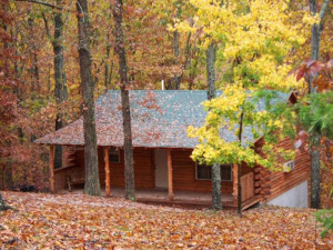 Exterior view of Cabin at Lake Forest Cabins.