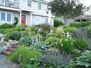 Garden view at Tidewater Inn.