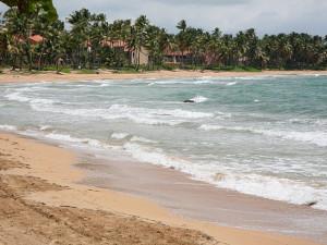 Ocean View Near Club Cala de Palmas