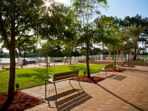 Park near Laketown Wharf.