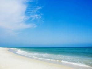 Beautiful Beaches at Paradise Palms Inn