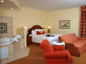 King Jacuzzi Suite at Hilton Garden Inn Knoxville