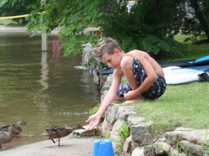 Feeding ducks at Patterson Kaye Resort.