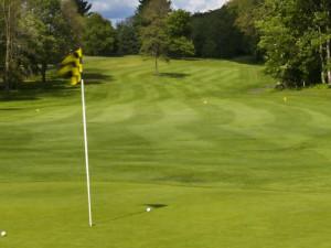 Golfing at Fernwood Resort.