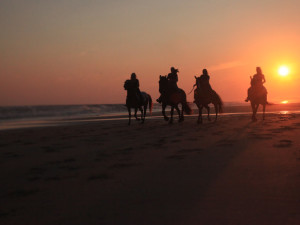 Horseback riding on the beach at Beachwoods.