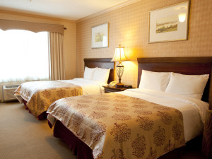 Spacious and Accommodating- Our Guest Rooms Really Have it All!