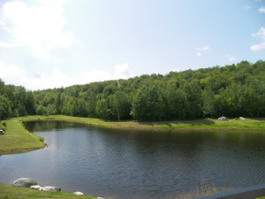 Pond at Loon Reservation Service.