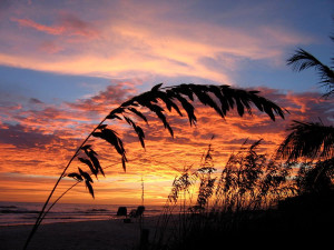 Sunset on the beach at Island Vacations Of Sanibel.