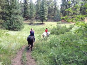 Horseback riding near Sunetha Property Management.