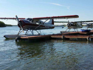 Sea planes at Alaska's Gold Creek Lodge.