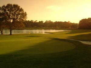 Golf course near Beach Colony.