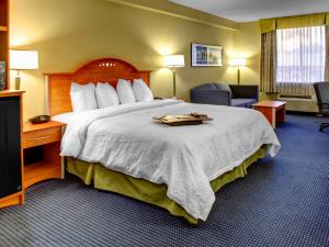Guest room at Hampton Inn Fort Lauderdale.
