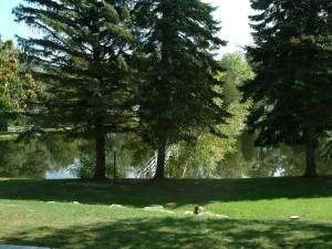 Lake view at Chestnut Grove Resort.